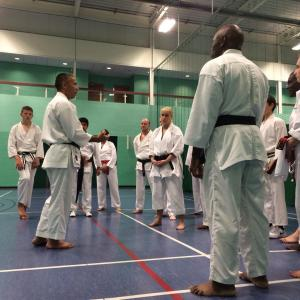 Image of Sean Roberts Sensei explaining in detail.