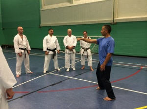 Image of Sean Roberts Sensei explaining the body mechanics